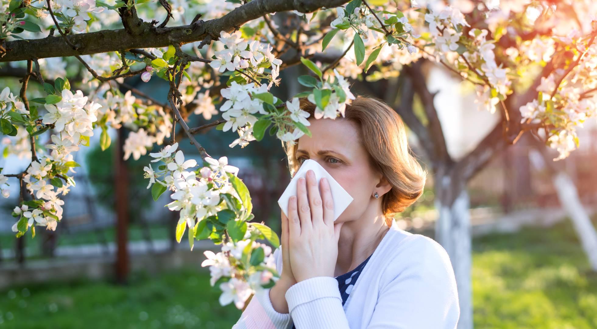 Causes des allergies